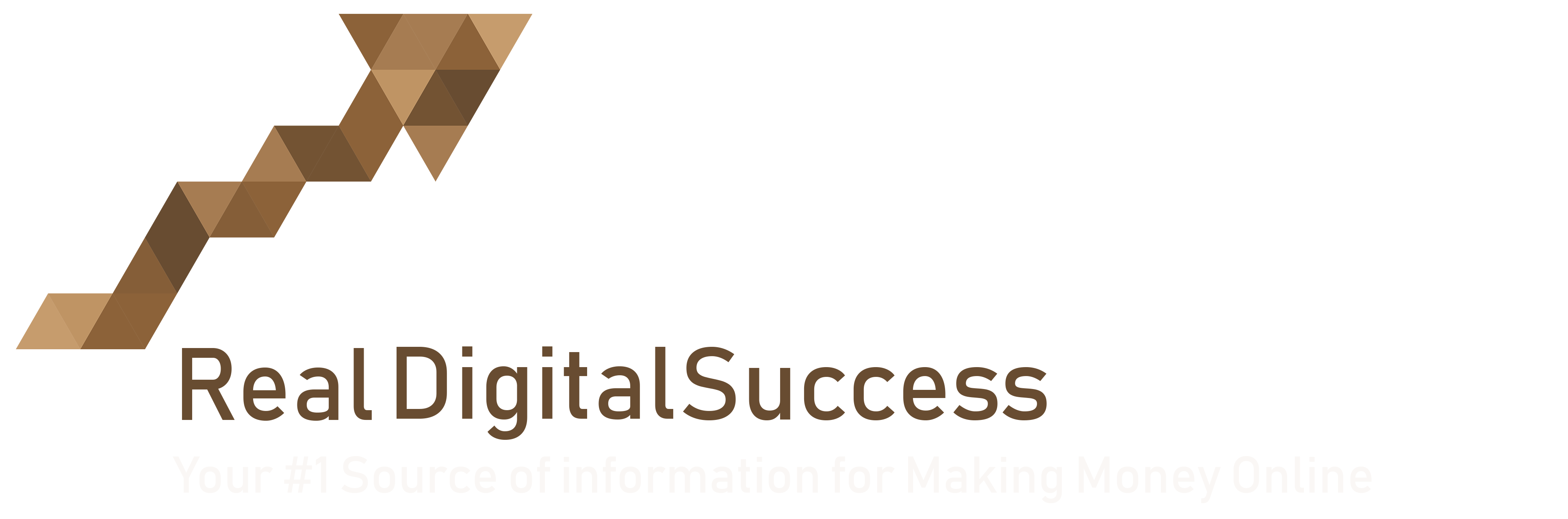 Real  Digital Success