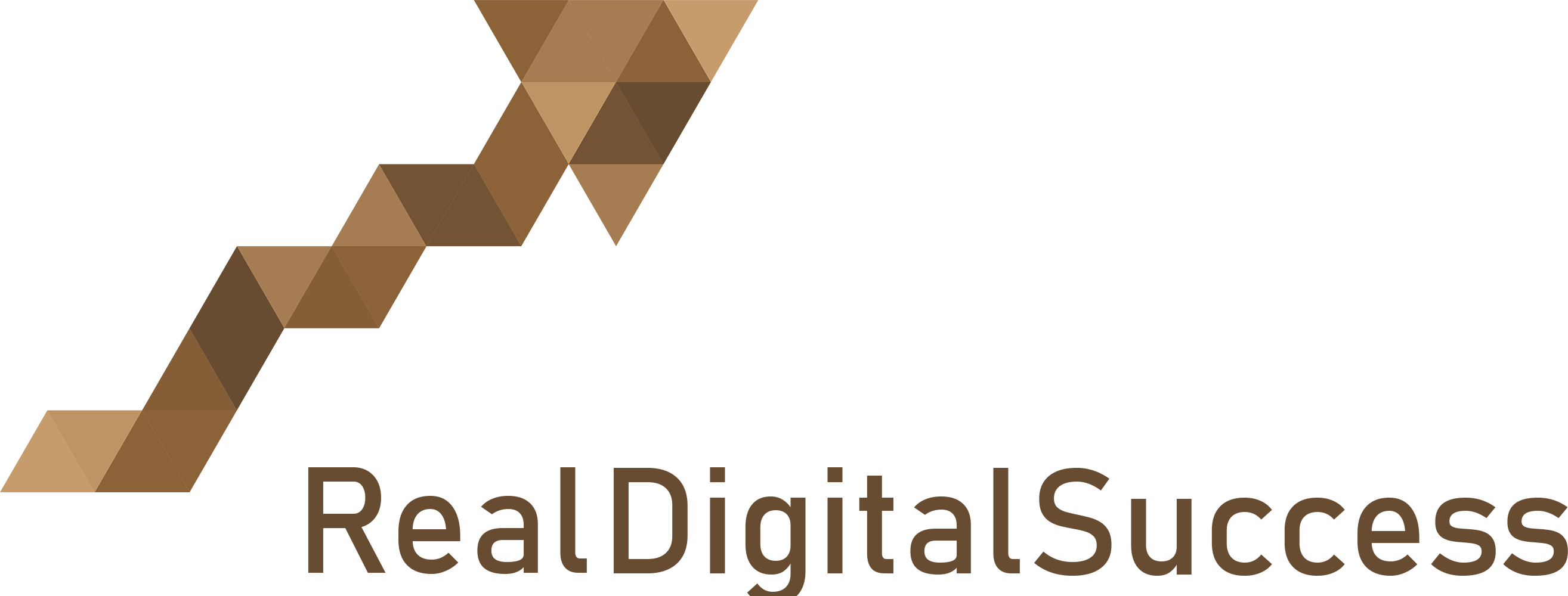 Real digital Success logo
