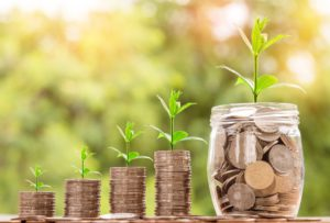 Growing money like plants