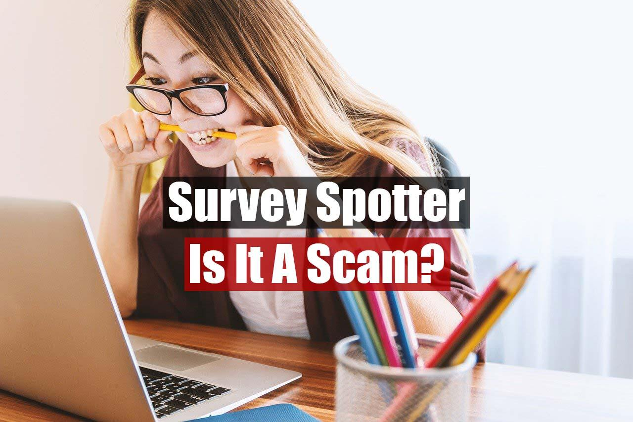 Survey Spotter Review featured image