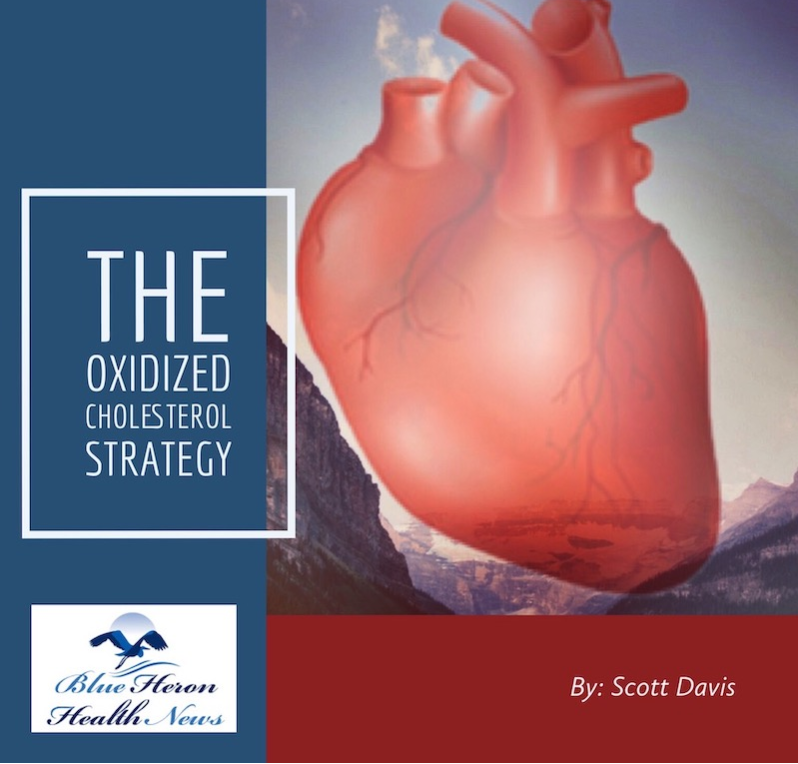 The Oxidized Cholesterol Strategy cover