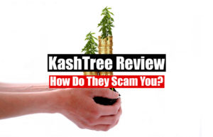 Is KashTree A Scam Featured Image